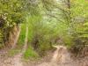 12-szczebrzeszynski-park-krajobrazowy