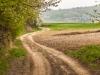 15-szczebrzeszynski-park-krajobrazowy-kaweczynek