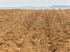 20-kaweczynek-roztoczanski-park-narodowy