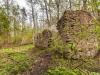40-ruiny-papierni-zamojskich-roztocze