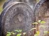 004-zydowskie-tablice-nagrobkowe