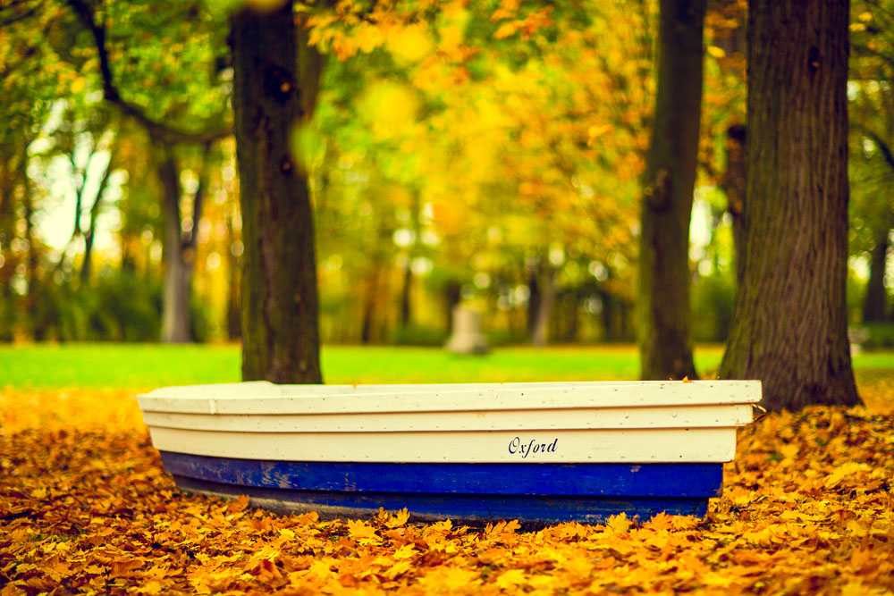 jesien zdjecia, jesien w parku